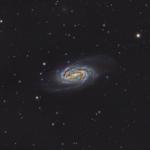 NGC2905